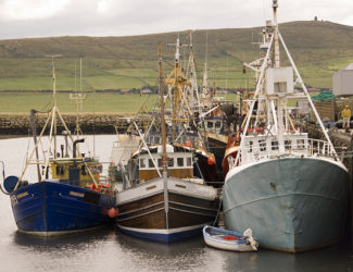 fishing boats01