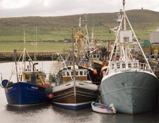 fishing boats01